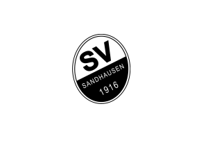 sv-sandhausen_neu